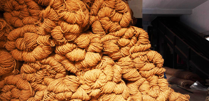 Coir: An Insight