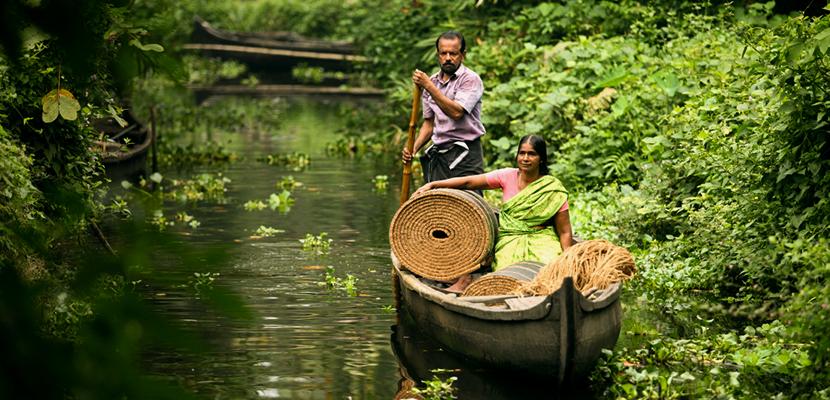 Kerala's Golden Fibre